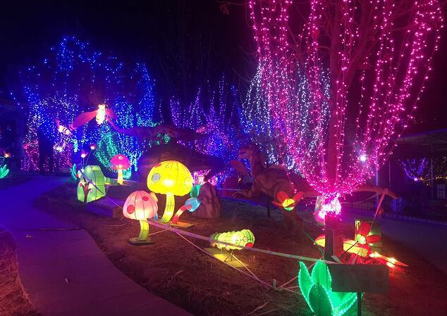 """一年一度的圣诞节即将来临,值此之际天下第一灯落户廊坊市御和动物园了,自2016年12 月 24 日—2017 年 2 月 27 日这里正在举办""""2017自贡花灯廊坊首展""""即""""2017御和动物园鸡年大吉迎春灯会"""",市民们晚上如果有兴趣可以到御和动物园参与夜场的活动。在这里市民们可以赏迎春灯会、看马戏、品各地美食、玩儿童游戏、逛年货大集、游新年庙会、还能参与小动物互动活动。"""
