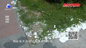 不文明行为曝光台:凤仪道现白色垃圾望有关部门尽快清理